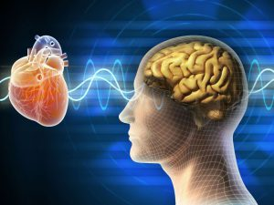 Heart-Brain Resilience